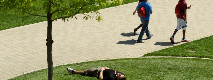 students walking to class in a grassy area