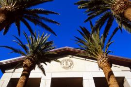 Stanford Alumni Hall - tan building with pointed roof framed by palm trees